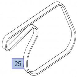 Pasek klinowy wielorowkowy 1.3 CDTI 55582037 (Corsa D, Meriva B)