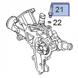 Króciec, rurka pompy wody 55564351 (Agila A, Ampera, Astra G, H, Corsa C, D, Meriva A, Tigra B)