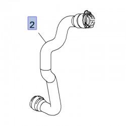 Wąż, przewód dolny chłodnicy 9818259280 (Crossland X)